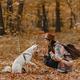 Stylish woman training white dog in sunny autumn woods. Cute swiss shepherd puppy learning - PhotoDune Item for Sale