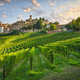 Neive village and Langhe vineyards, Piedmont, Italy Europe. - PhotoDune Item for Sale