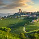 Barbaresco village and Langhe vineyards, Piedmont, Italy Europe. - PhotoDune Item for Sale