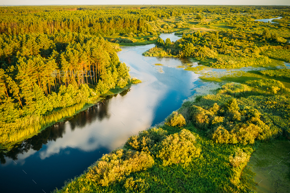Aerial Elevated View Of Green Forest Growth On River Coast Landscape In Sunny Summer Evening - Stock Photo - Images