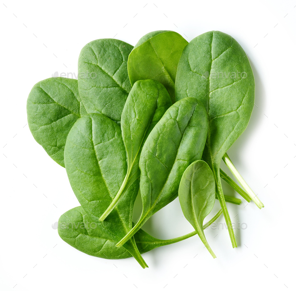 fresh green spinach leaves - Stock Photo - Images
