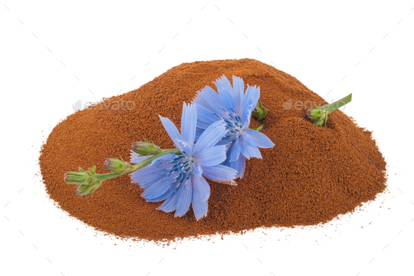 Blue chicory flower and powder of instant chicory - Stock Photo - Images