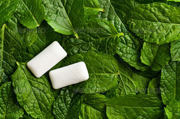 mint leaves and chewing gum - Stock Photo - Images