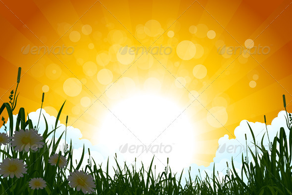 Sunrise Landscape with Grass - Landscapes Nature
