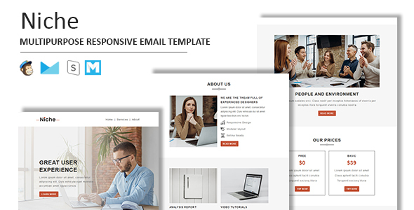 Niche - Multipurpose Responsive Email Template