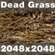 Dead Grass_01 - 3DOcean Item for Sale