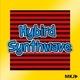 Hybird Synthwave