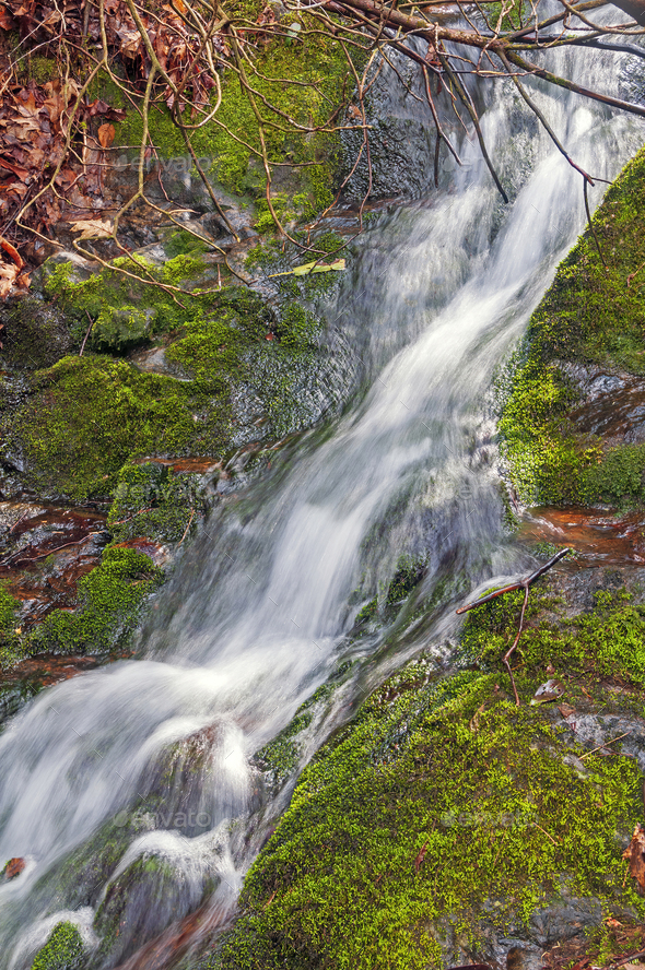 Hidden Cascade in the Deep Forest - Stock Photo - Images