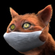 Red Cat with Medical Mask - VideoHive Item for Sale