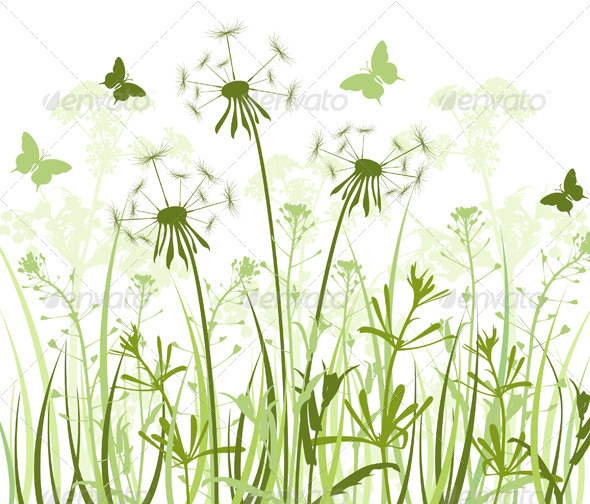 Floral Background with Dandelions  - Flowers & Plants Nature