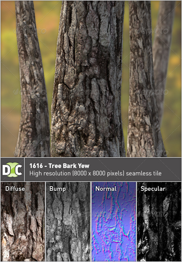1616 - Tree Bark Yew - 3DOcean Item for Sale