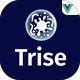Trise - Vuejs Disinfection & Cleaning Template