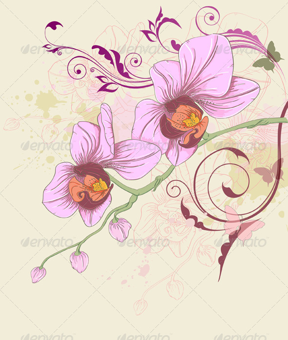 Floral Background with Orchid and Ornament - Flowers & Plants Nature