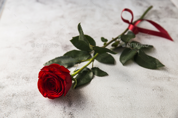 Red roses on grey stone background. - Stock Photo - Images