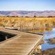 Boardwalk going through wetlands - PhotoDune Item for Sale