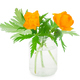 Globe-flowers in glass jar - PhotoDune Item for Sale