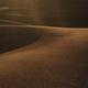 Desert Journeyman - PhotoDune Item for Sale