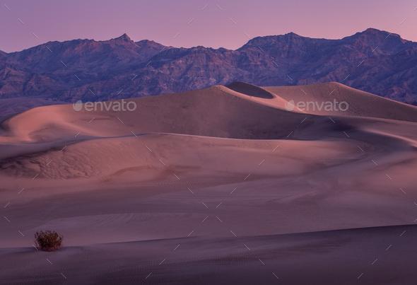 Sunset Sandunes - Stock Photo - Images