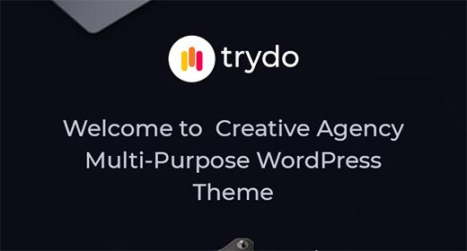 Best WordPress Agency Theme