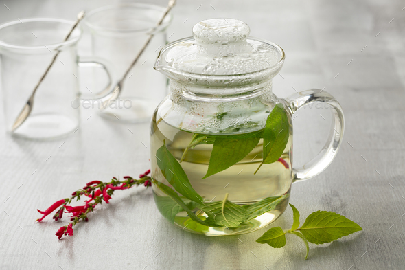 Teapot with Salvia elegans tea and fresh leaves and red flowers in front - Stock Photo - Images