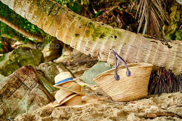 Beach bag and hats by palm tree - Stock Photo - Images