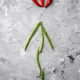 Green bean and red pepper on grunge background - PhotoDune Item for Sale