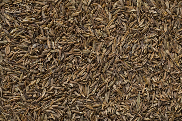 Dried cumin seed close up full frame - Stock Photo - Images