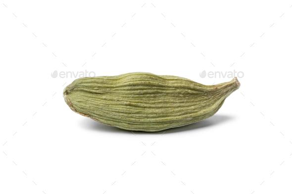 Single green cardamom pod close up isolated on white background - Stock Photo - Images