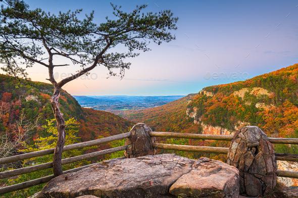 Cloudland Canyon, Georgia, USA - Stock Photo - Images