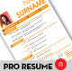 Professinal Resume - GraphicRiver Item for Sale
