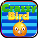 Crazzy Bird
