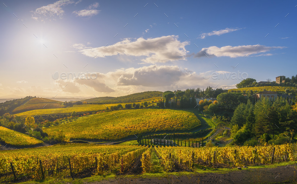 Gaiole in Chianti vineyards and panorama at sunset. Tuscany, Italy - Stock Photo - Images