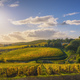 Gaiole in Chianti vineyards and panorama at sunset. Tuscany, Italy - PhotoDune Item for Sale