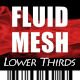 Fluid Mesh Lower Thirds - VideoHive Item for Sale