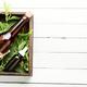 Nettle in herbal medicine - PhotoDune Item for Sale