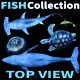 Top View Collection - VideoHive Item for Sale