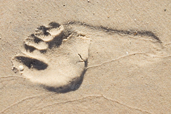 Footprint in the sand - Stock Photo - Images