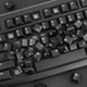 Heap of removed keys from a computer keyboard - PhotoDune Item for Sale