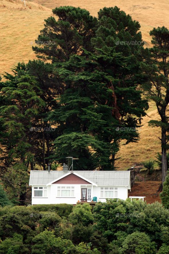 Marlborough Sound, New Zealand - Stock Photo - Images