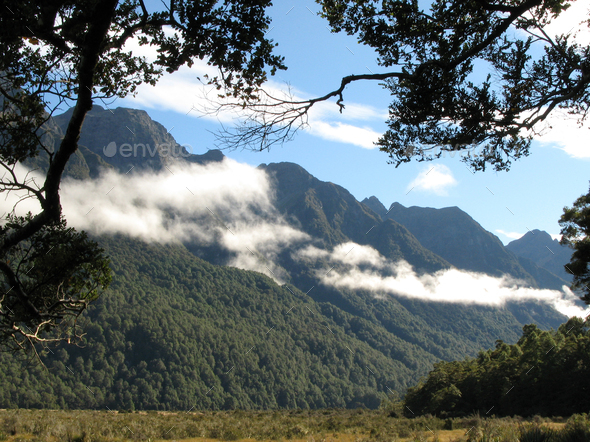 Milford Sound, Te Wahipounamu, New Zealand - Stock Photo - Images