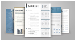 Resume & Proposal Sets