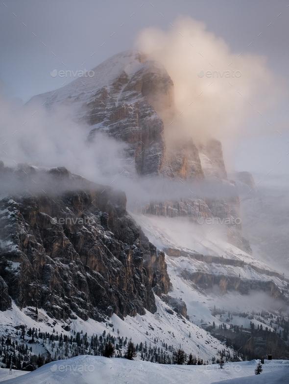 Winter Wonderland - Stock Photo - Images