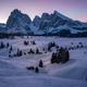 Alpi di Suisi - PhotoDune Item for Sale