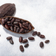 Split fermented cocoa pod with shelled cacao beans atop light grey backdrop, top view, c opy space - PhotoDune Item for Sale