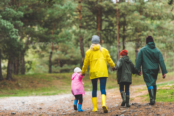 back view of parents and kids holding hands together while walking in autumn forest - Stock Photo - Images