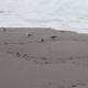 Ocean Storm 19 - VideoHive Item for Sale