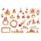 Set of Fire Flames Fireballs and Burning Bonfire
