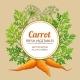 Carrot Vector Frame