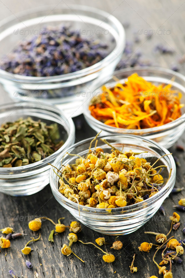Dried Medicinal Herbs - Stock Photo - Images