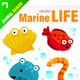 Marine / Sea Life - GraphicRiver Item for Sale
